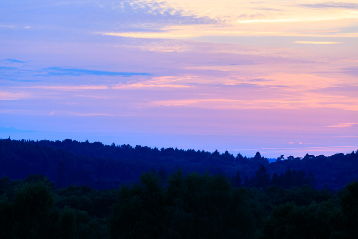 Puttenham Common Sunset